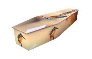 Kingfisher Autumn